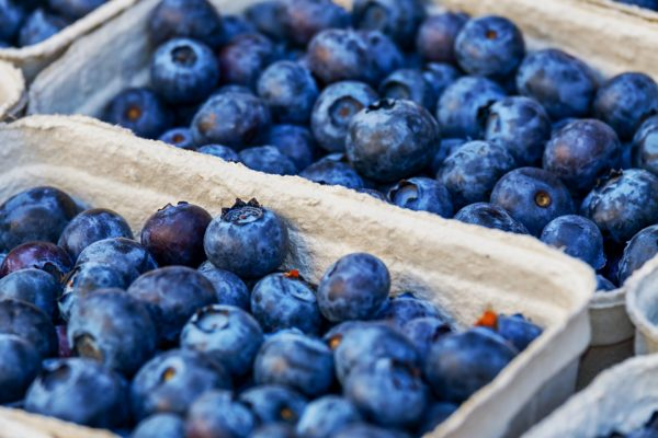Blueberries for honey